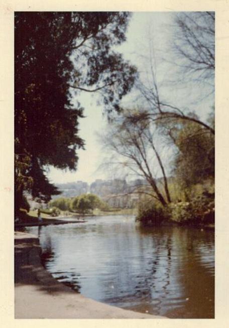 Lake Trees Unknown Found Photo